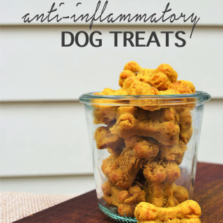Anti-Inflammatory Dog Treats